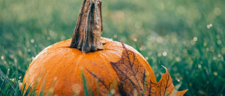 Nyíri Andrea ékszer őszi ékszerek