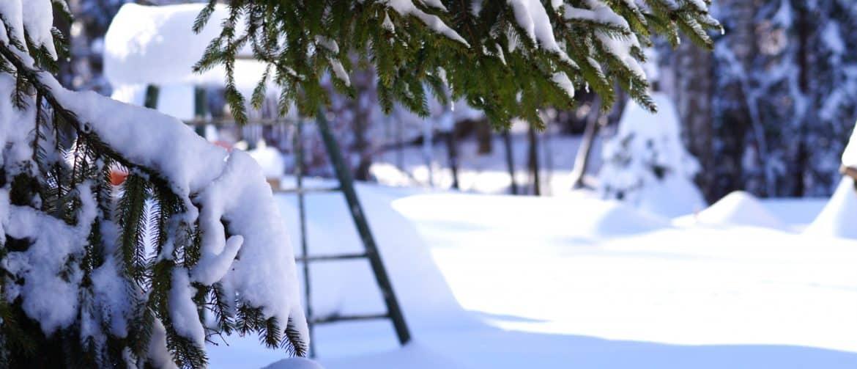 Nyíri Andrea téli kirándulás
